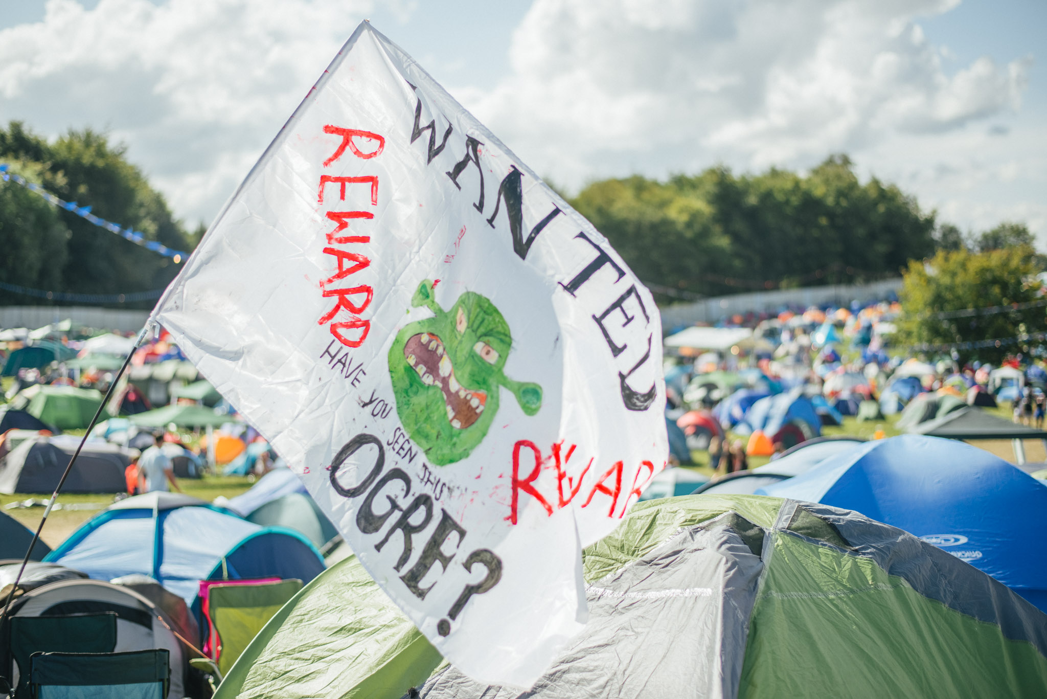 Festival Hacks Camping Flag
