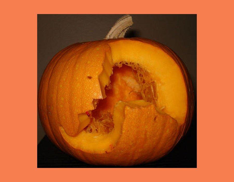 Pumpkin-Fails-6